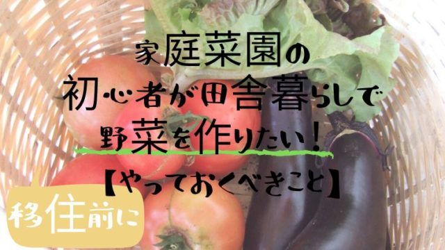 家庭菜園の初心者が田舎暮らしで野菜を作りたい!【移住前にやっておくべきこと】