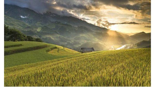 田舎暮らしをする前は仕事は我慢だと思っていた、【忙しいあなたへ】