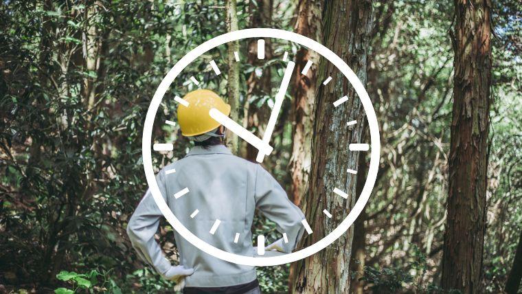 【悩める若者へ】20代チェーンソー未経験でもできる林業の始め方<仕事内容はきつい?>