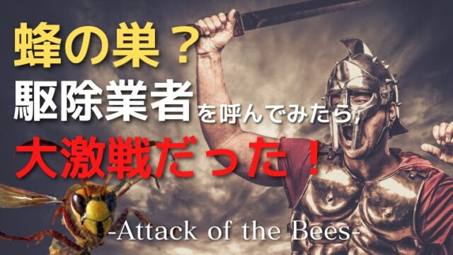 【蜂の恐怖体験】蜂の巣を作り始めたと思い、駆除業者を呼んだら、まさかの・・。